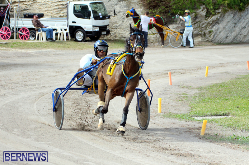 Remembrance-Day-Harness-Racing-Bermuda-Nov-11-2016-16