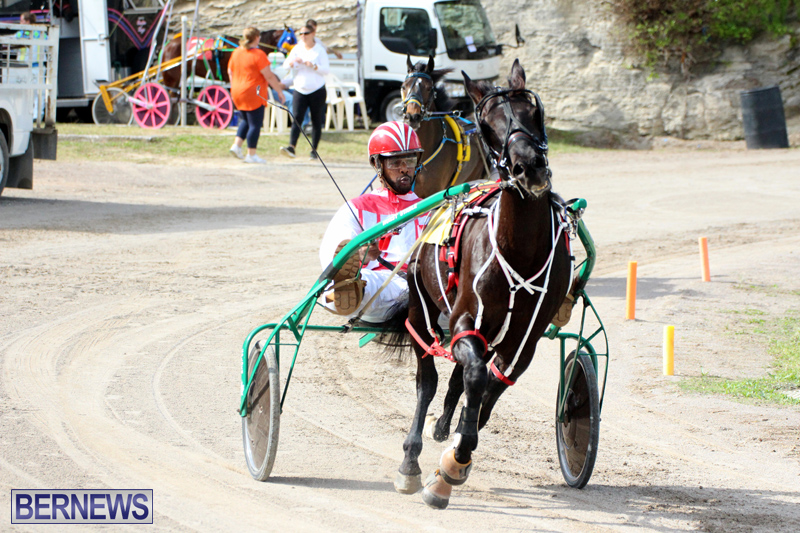 Remembrance-Day-Harness-Racing-Bermuda-Nov-11-2016-17