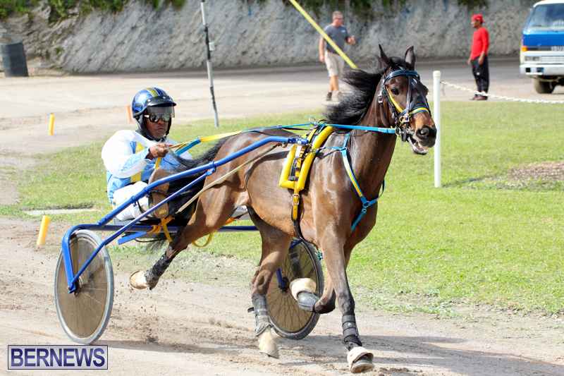 Remembrance-Day-Harness-Racing-Bermuda-Nov-11-2016-18
