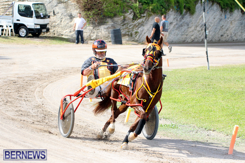 Remembrance-Day-Harness-Racing-Bermuda-Nov-11-2016-19
