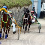Remembrance Day Harness Racing Bermuda Nov 11 2016 (3)
