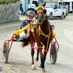 Remembrance Day Harness Racing Bermuda Nov 11 2016 (5)