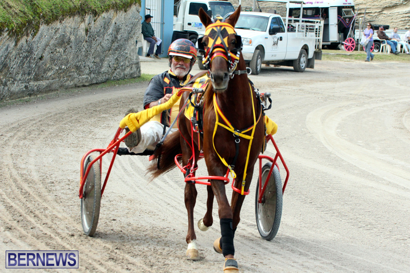 Remembrance-Day-Harness-Racing-Bermuda-Nov-11-2016-5