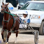 Remembrance Day Harness Racing Bermuda Nov 11 2016 (8)