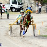 Remembrance Day Harness Racing Bermuda Nov 11 2016 (9)