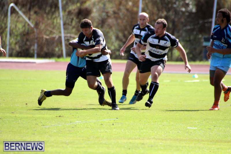 Renegades-Founders-Day-Rugby-Oct-30-2016-5