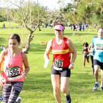 Run Bermuda Nov 2016 (15)