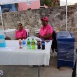 St Georges Old Town Market Bermuda, November 26 2016 (21)