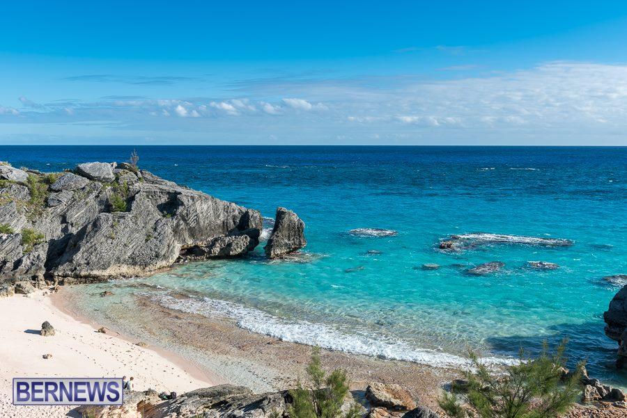 394 Winter Color Bermuda Generic Dec 2016