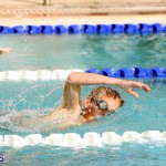 BASA Winter Swim Meet Bermuda Dec 4 2016 (10)