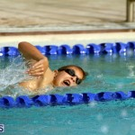 BASA Winter Swim Meet Bermuda Dec 4 2016 (13)