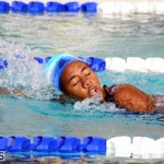 BASA Winter Swim Meet Bermuda Dec 4 2016 (3)