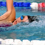 BASA Winter Swim Meet Bermuda Dec 4 2016 (4)