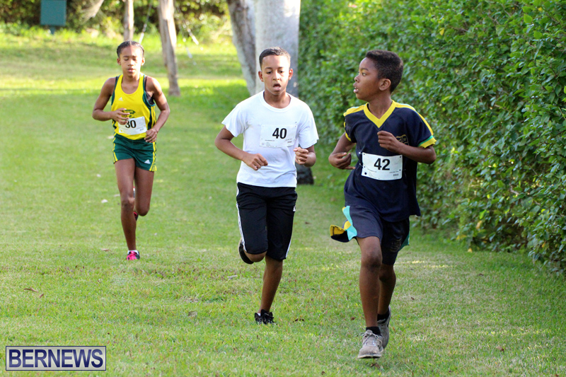 BNAA-National-Cross-Country-Championships-Bermuda-Dec-3-2016-9