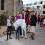 Cathedral Pony Rides - Fun Castle Dec 23 (12)