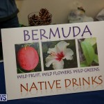 Home Grown Alternatives Market Bermuda, December 10 2016-140