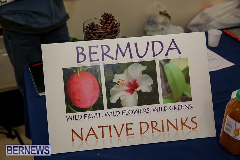 Home-Grown-Alternatives-Market-Bermuda-December-10-2016-140