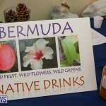 Home Grown Alternatives Market Bermuda, December 10 2016-141