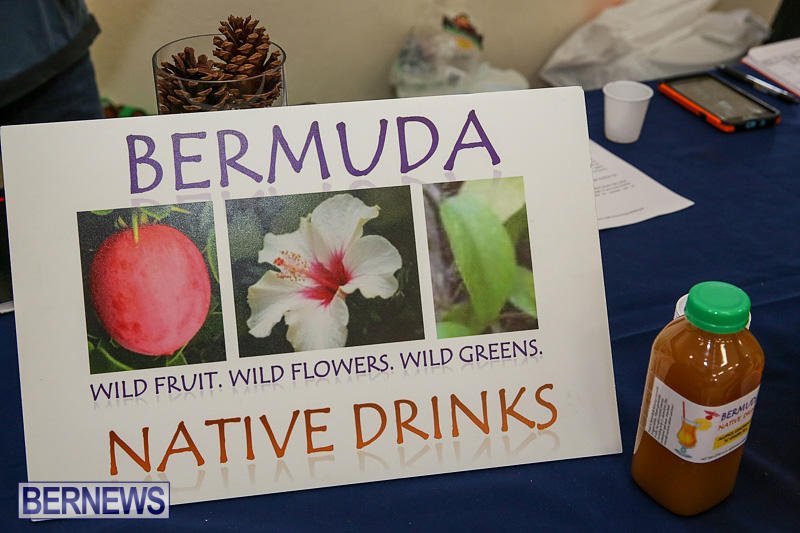 Home-Grown-Alternatives-Market-Bermuda-December-10-2016-141