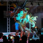 Bermuda Heroes Weekend Band Launch, January 8 2017-138