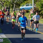 Bermuda Race Weekend 10K, January 14 2017-148