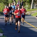 Bermuda Race Weekend 10K, January 14 2017-84