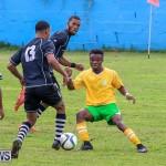 Football Devonshire Cougars vs PHC Bermuda, January 1 2017-14