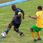 Football Devonshire Cougars vs PHC Bermuda, January 1 2017-19