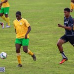 Football Devonshire Cougars vs PHC Bermuda, January 1 2017-22