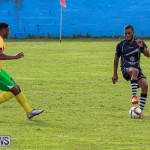 Football Devonshire Cougars vs PHC Bermuda, January 1 2017-31