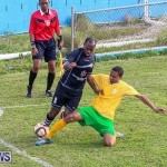 Football Devonshire Cougars vs PHC Bermuda, January 1 2017-65