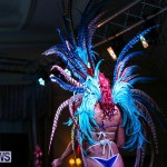 Intense Bermuda Heroes Weekend Band Launch, January 8 2017-101