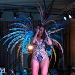 Intense Bermuda Heroes Weekend Band Launch, January 8 2017-102
