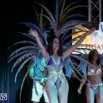 Intense Bermuda Heroes Weekend Band Launch, January 8 2017-104