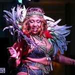 Intense Bermuda Heroes Weekend Band Launch, January 8 2017-117