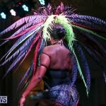 Intense Bermuda Heroes Weekend Band Launch, January 8 2017-121