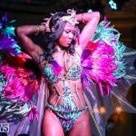 Intense Bermuda Heroes Weekend Band Launch, January 8 2017-129
