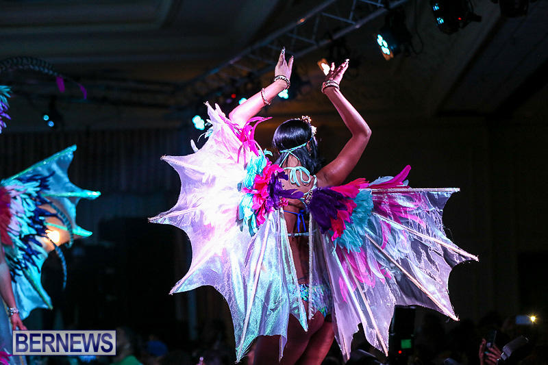 Intense-Bermuda-Heroes-Weekend-Band-Launch-January-8-2017-130