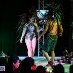 Intense Bermuda Heroes Weekend Band Launch, January 8 2017-24
