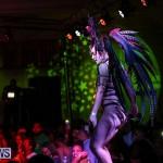 Intense Bermuda Heroes Weekend Band Launch, January 8 2017-30