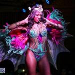 Intense Bermuda Heroes Weekend Band Launch, January 8 2017-61