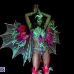 Intense Bermuda Heroes Weekend Band Launch, January 8 2017-62