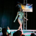 Intense Bermuda Heroes Weekend Band Launch, January 8 2017-76
