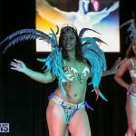 Intense Bermuda Heroes Weekend Band Launch, January 8 2017-85