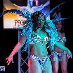 Intense Bermuda Heroes Weekend Band Launch, January 8 2017-86