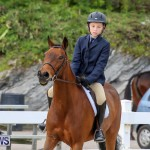 RES Horse Show Bermuda, January 21 2017-11
