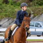 RES Horse Show Bermuda, January 21 2017-12