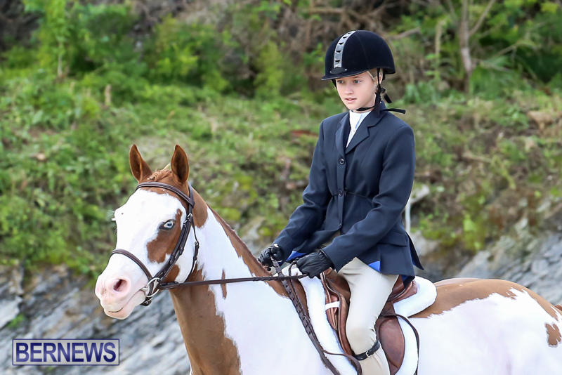 RES-Horse-Show-Bermuda-January-21-2017-13