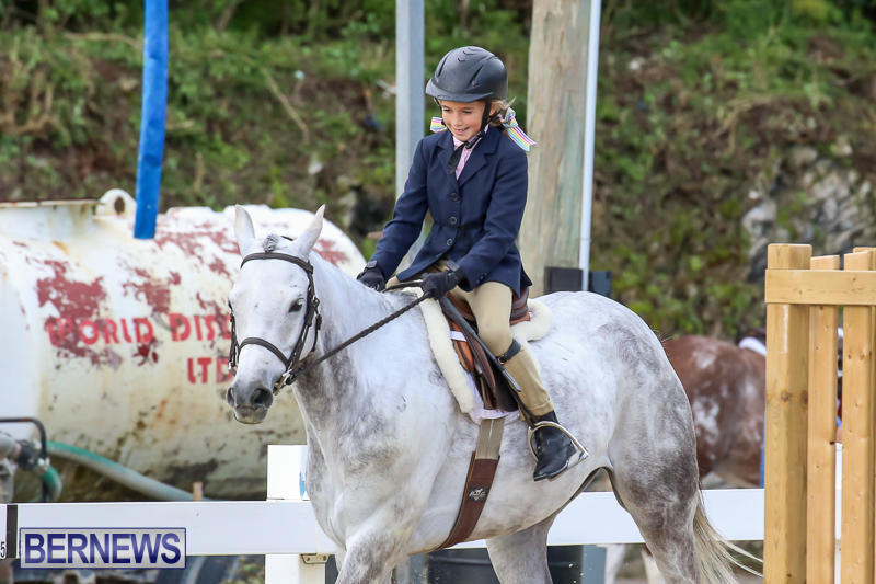 RES-Horse-Show-Bermuda-January-21-2017-14