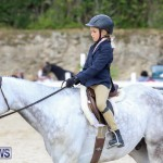 RES Horse Show Bermuda, January 21 2017-18
